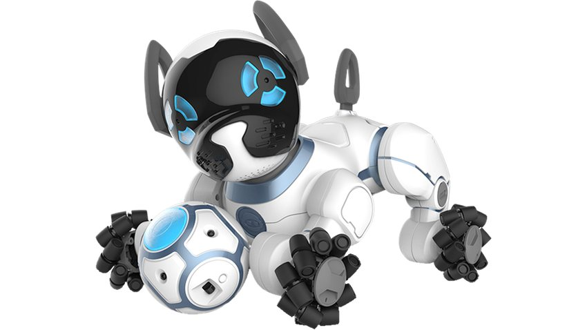High Tech Toys For Dogs